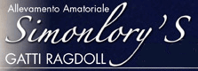 iRagdoll.it - Allevamento Amatoriale Simonlory's Gatti Ragdoll & Pet Therapy